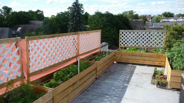 Selbstversorger Garten, Pflanzkübel aus Holz, Tomaten und andere Gemüse