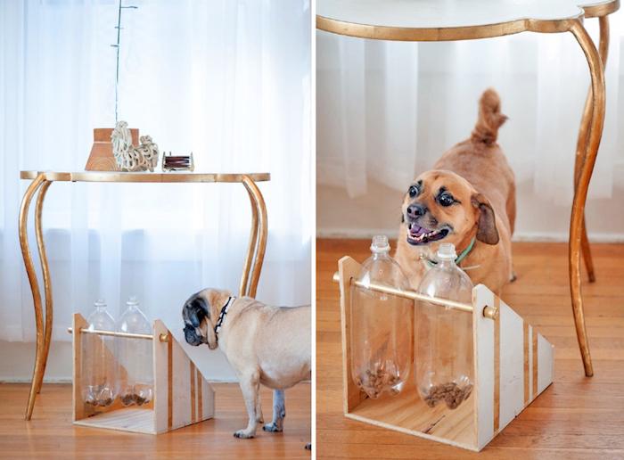 denkspiele für hunde, diy futterspender aus holz und plastikflaschen, hunde futtern