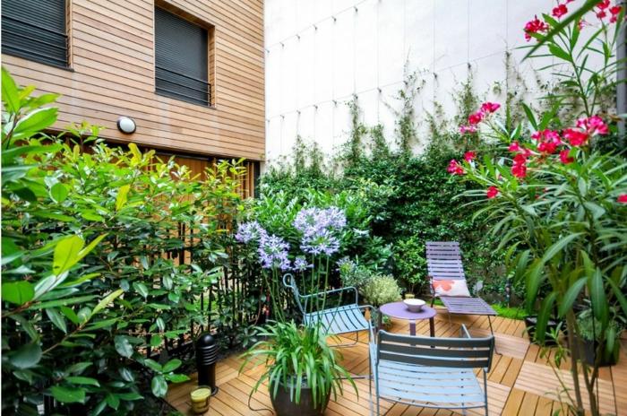 rosa Blumen, Pflanze mit breiten Blättern, lila Blumen, Kletterpflanzen, Terrassenbepflanzung