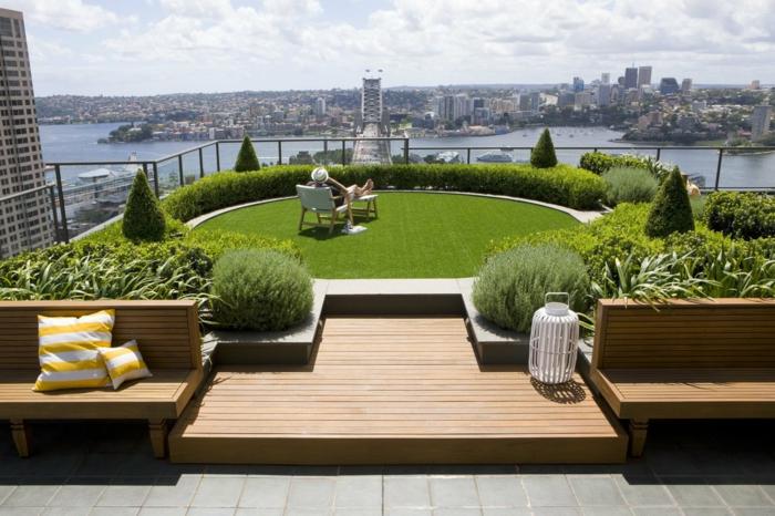 eine sonnige Terrasse mit Rasen, viele Pflanzen mit scharfen Spitzen, Terrassenpflanzen