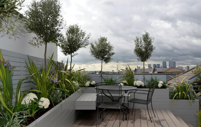 fünf Bäume, kleine grüne Pflanzen am Sichtschutz, Blumenkübel bepflanzen