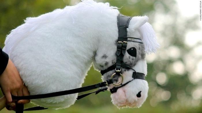 ein kleines weißes pferd mit einer weißen dichten mähne und mit schwarzen augen, hände und ein selbatgebasteltes steckenpferd