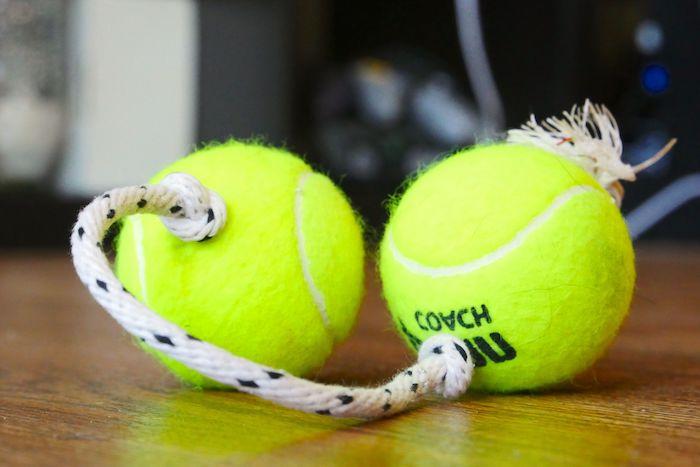hundespielzeug ball, spielzeug aus zwei tennisbällen und seil, selbstgemachtes spielzeug für hunde