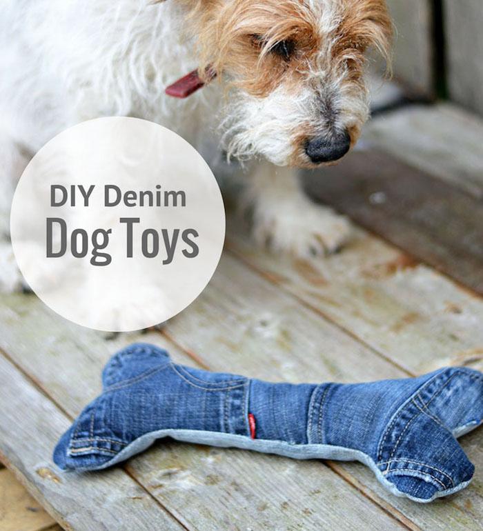 hundespielzeug selber basteln, kleiner hund, diy kauspielzeug aus alten jeans, upcycling