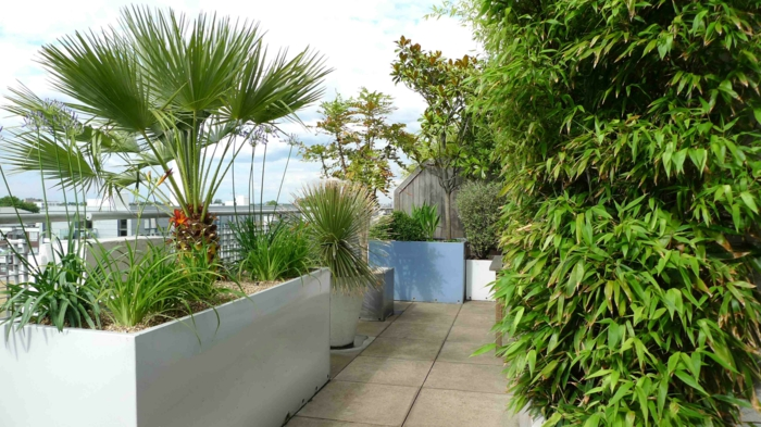 Pflanzkübel mit exotischen Pflanzen, große Fliesen Bodenbelag, Terrassen Ideen Bilder