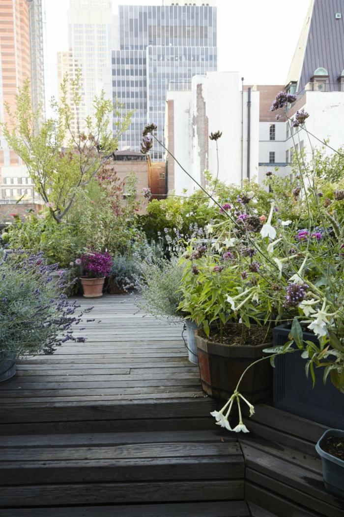 braune Terrassendiele, ein kleiner Baum, trockene Blumen, Terrassen bepflanzen