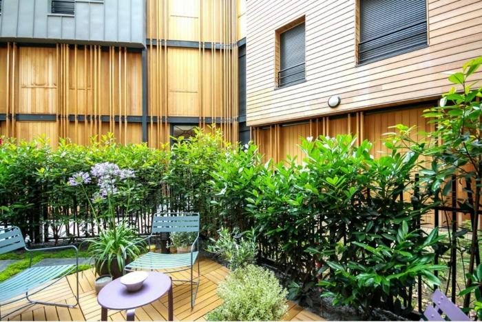 Terrasse mit lila Blumen in der Mitte, Herzformige grüne Pflanzen für Terrasse
