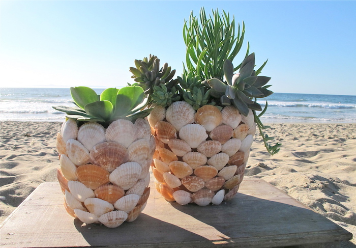 sommerdeko basteln, blumentöpfe selber machen, grüne pflanzen, maritime deko