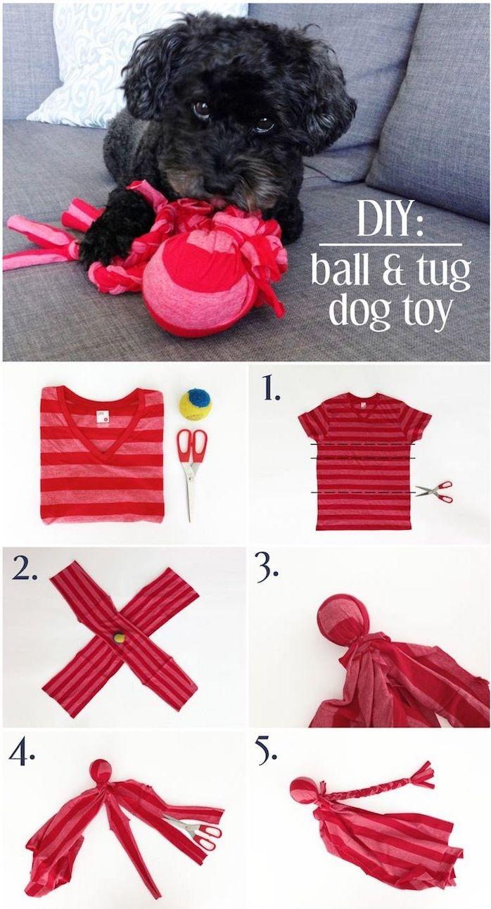 spielzeug hund, kleiner schwarzer hund mit selbstgemachtem spielzeug, kauspielzeug aus stoff und ball