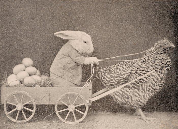 ein altes bild mit einer henne, witzige osterbilder kostenlos, ein kleiner weißer hase mit schwarzen augen und einem hemd, ein fuhrwerk mit vielen weißen eiern
