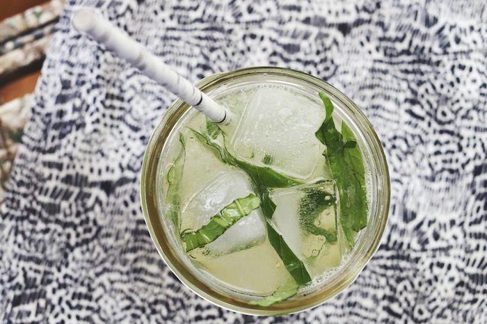 eine birke und ein glas mit einer hausgemachten limonade mit eis und mit minze mit grünen blättern, zitronenlimo selber machen