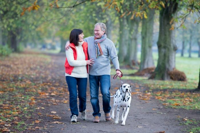 tipps zum abnehmen, eine schöne idee ist der hund zu hause, dann sollen sie mindestens zwei mal pro tag spazieren gehen und mehr putzen