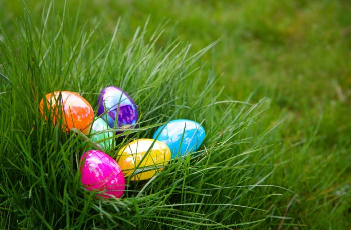 gut versteckte Eier auf einer Wiese für die Kinder zu finden, Ostereier bemalen mit Kindern
