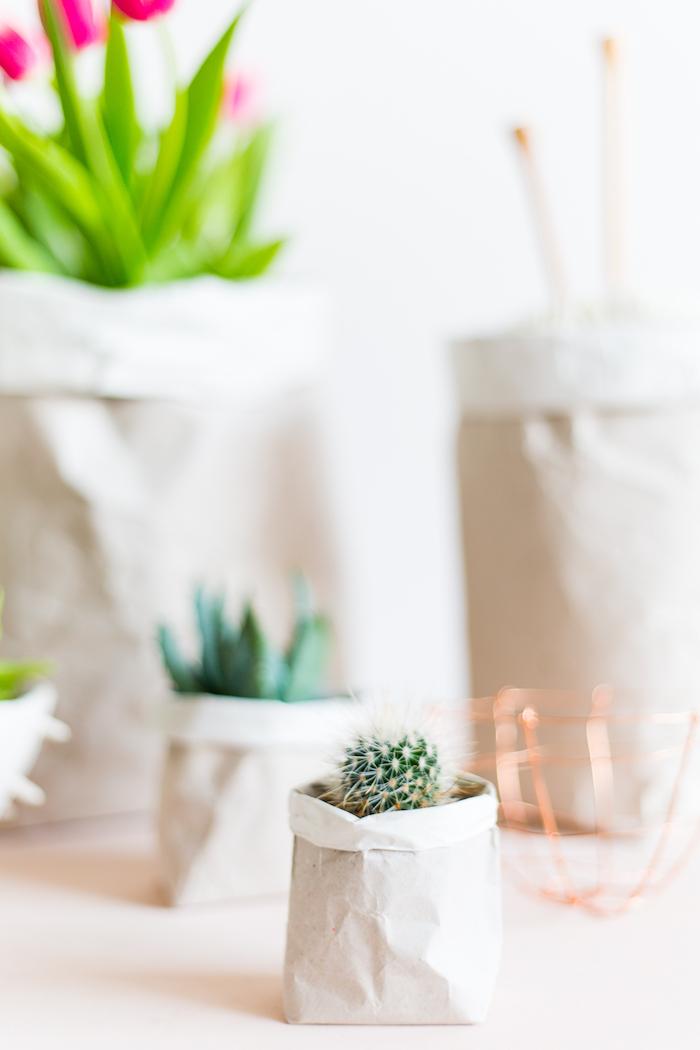 blumentopf mit einer kleinen weißen papiertüte und mit einem kleinen grünen kaktus, violette blumen mit vielen grünen blättern