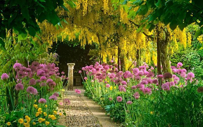 deko ideen garten, große bäume mit gelben blättern, rosa blumen, pfad