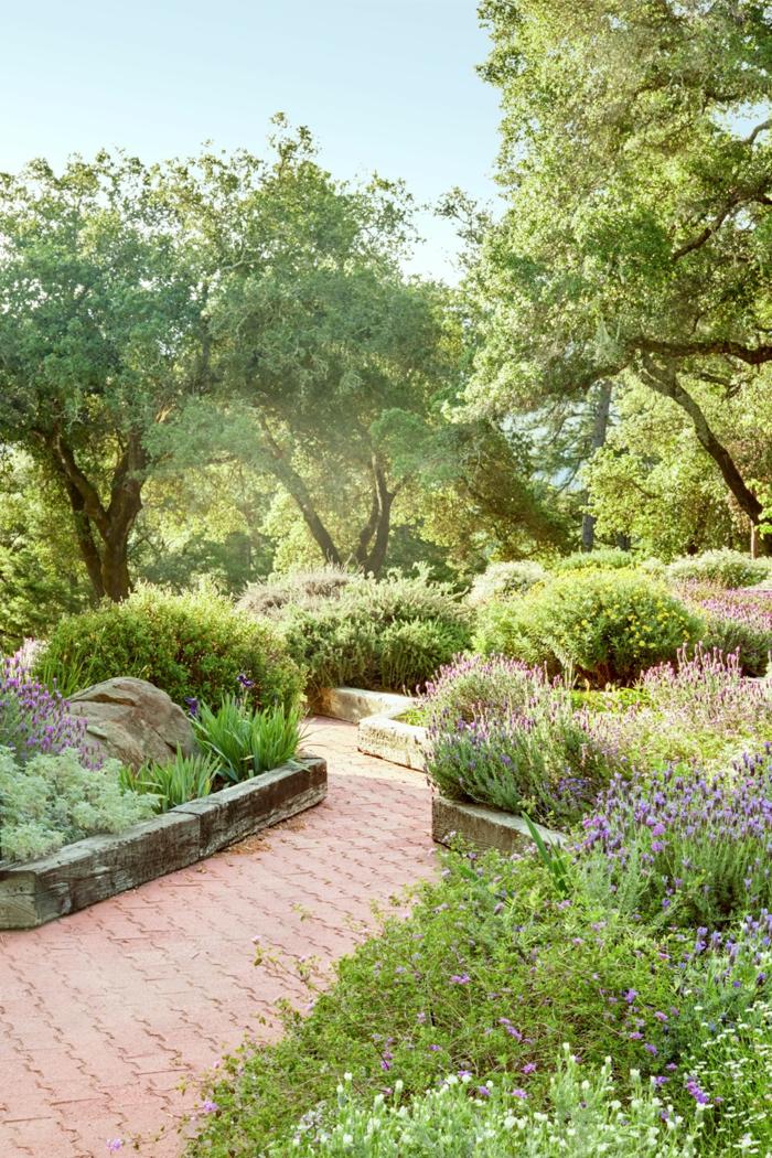 Gartenweg aus kleinen Steinen, Beete mit kleinen Büsche und niedrige Bäume, günstige Gartengestaltung Ideen