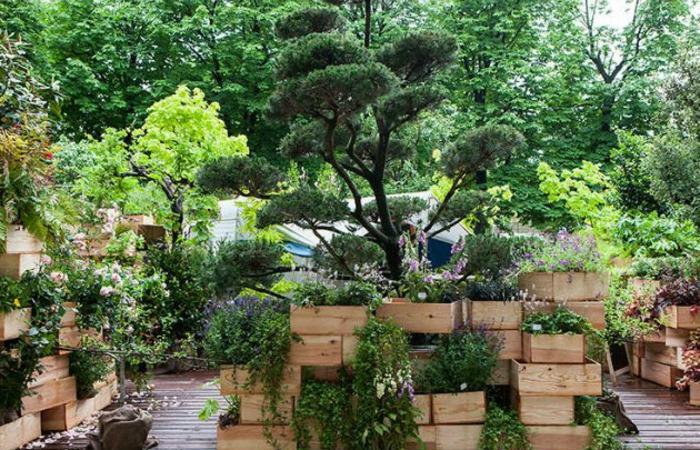 vertikaler Garten von Pflanzkübel aus Holz, günstige Gartengestaltung Ideen, Terrassendiele