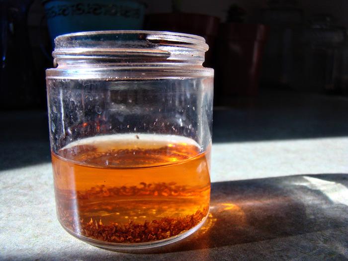 ein großer glas mit einem orangen essig aus äpfeln und mit vielen kleinen roten fruchtfliegen, eine fruchtfliegenfalle selber machen mit essig
