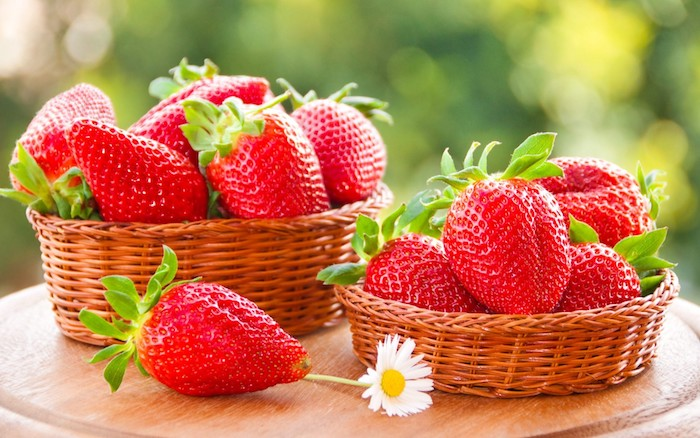 zwei körbe aus rattan und mit vielen roten erdbeeren mit grünen blättern, eine kleine weiße margerite , ein garten mit grünen pflanzen