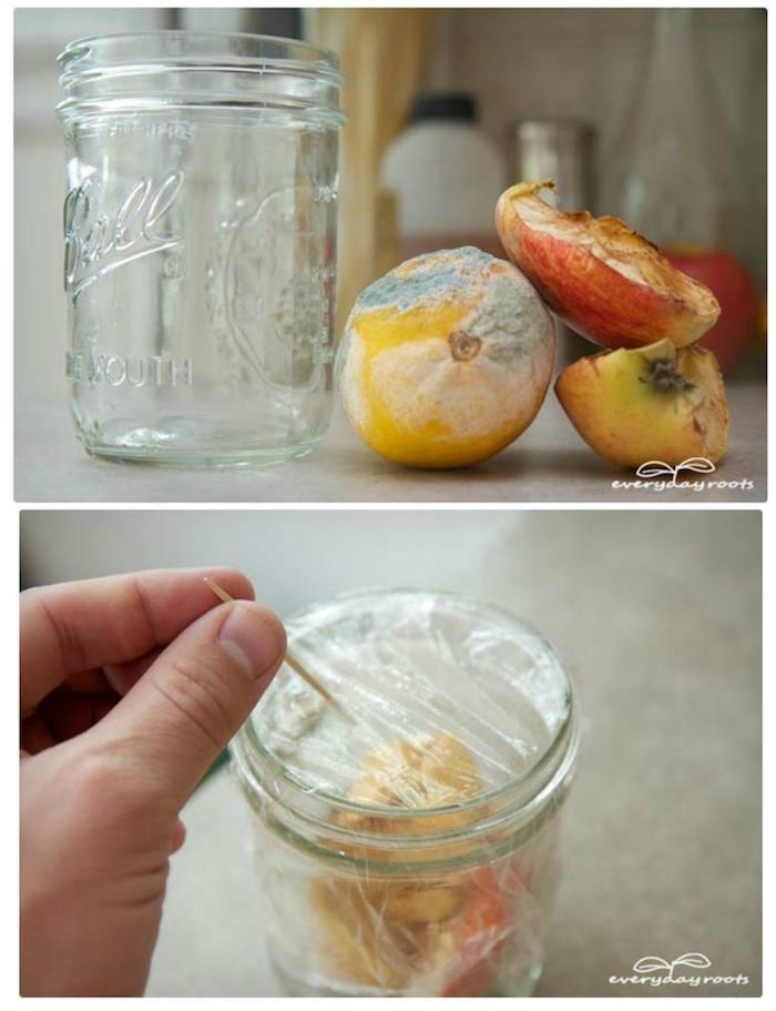 ein großer glas und eine hand mkt einem kleinen zahnstocher, eine fruchtfliegenfalle selbst bauen, gelbe zitrone und äpfel