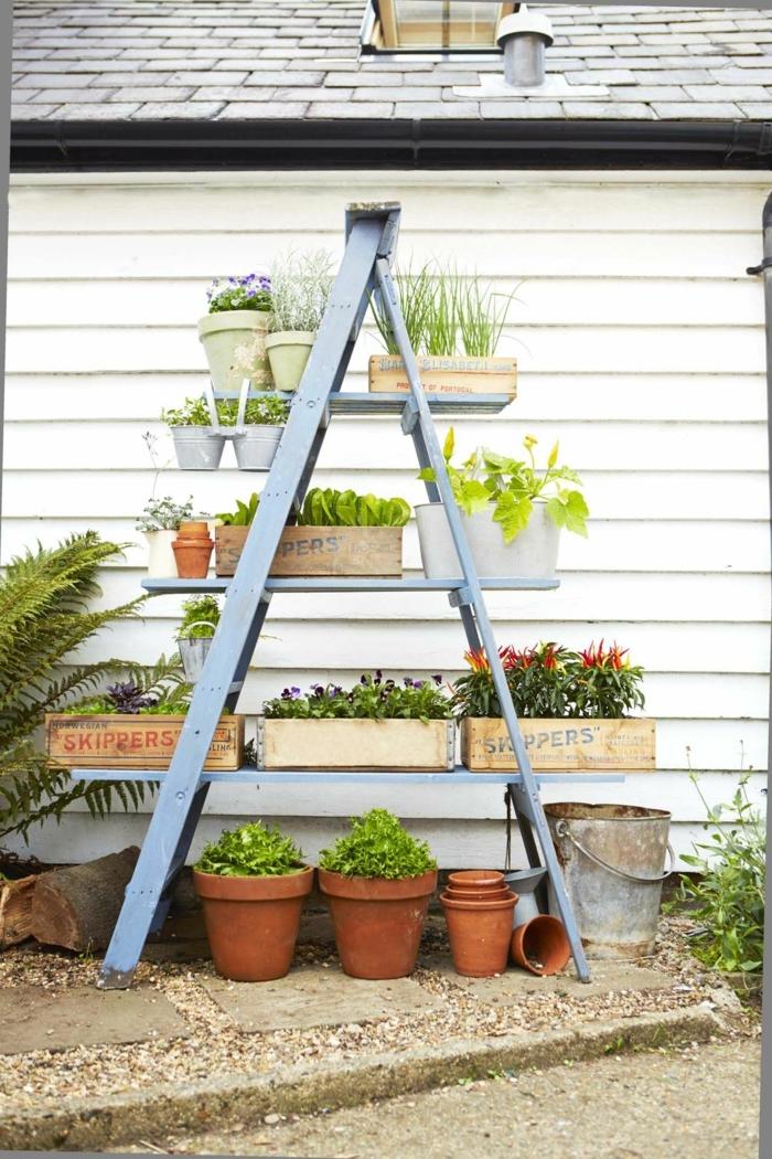 eine Leiter in blauer Farbe als Abstellraum, Bretter mit Pflanzenkübel, im Hinterhof