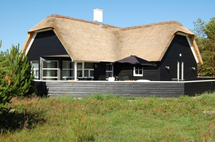 ein strohgedecktes Haus mit einer Wiese vorn an der dänischen Nordseeküste