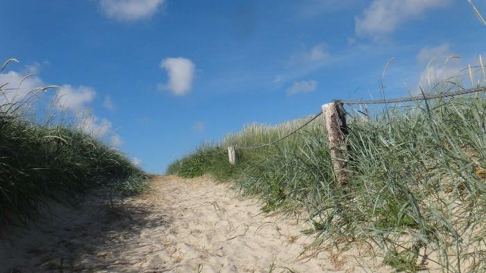 ein Sandweg an der dänischen Nordseeküste, von einem Zaun umgeben