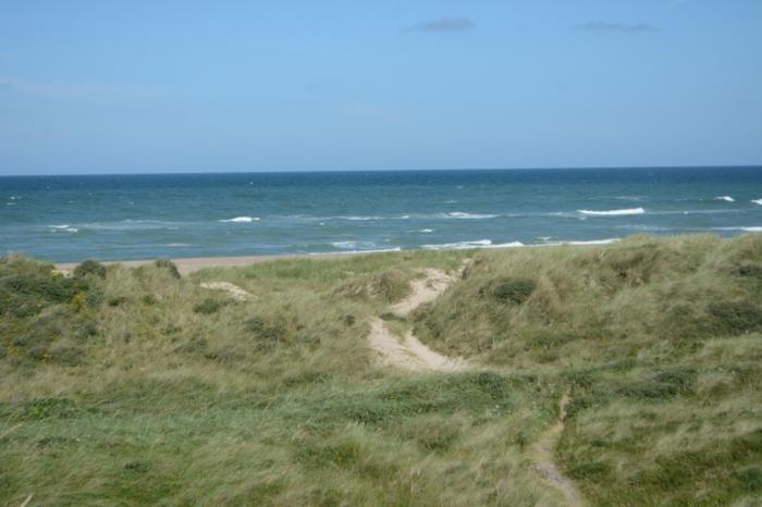 Strand und Düne, kleiner Sandweg an der dänischen Nordseeküste