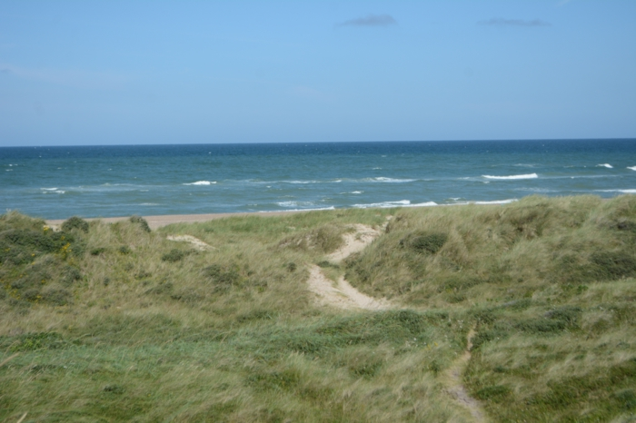 Holiday house stay at the Danish North Sea coast