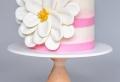 Torten dekorieren – inspirierende Ideen und Anleitungen
