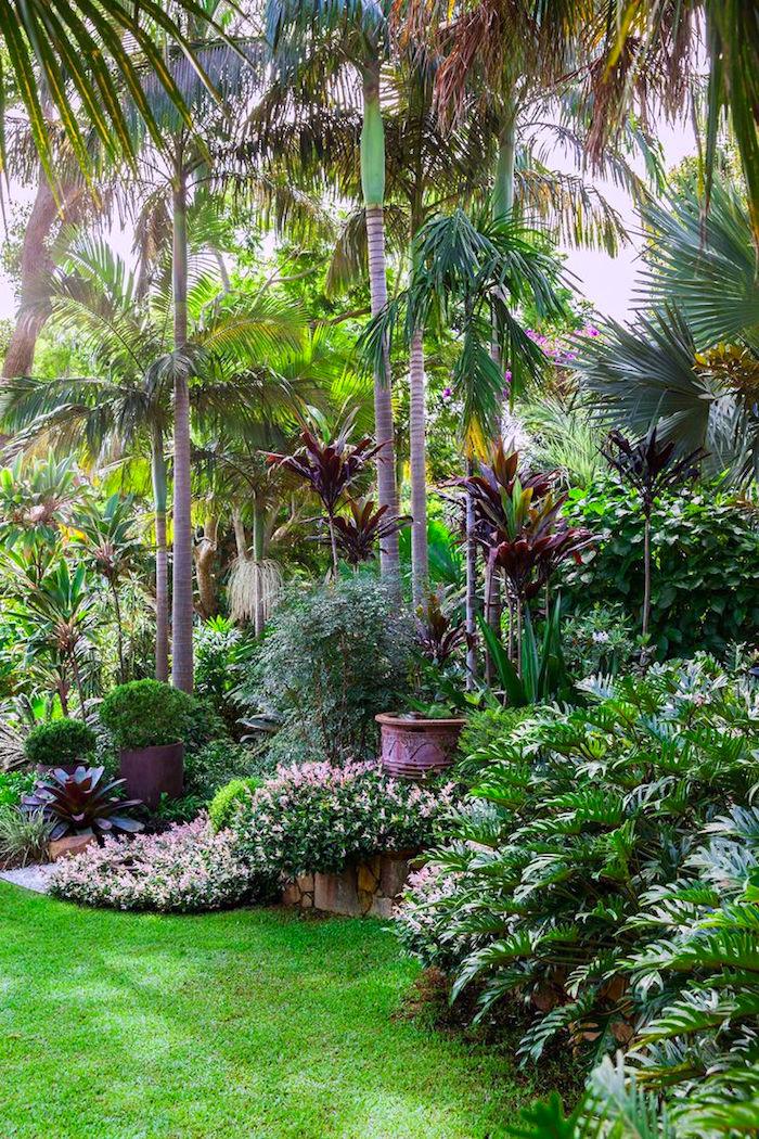 ideen gartengestaltung, große palmen, tropische bäume, grüner gras, busch mit blumen