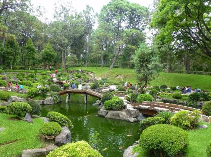 ein großer gemütlicher Garten mit Teich zum Entspannen in Natur, Garten anlegen günstig