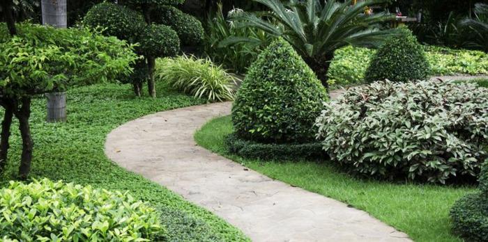 ein Gartenweg zwischen Beete mit grünen Pflanzen, Garten anlegen günstig, ein Rasen