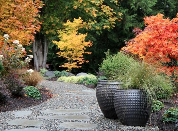 ein herrlicher Garten im Herbst mit kleinen Bäumen in roter, gelber und grüner Farbe, Garten verschönern