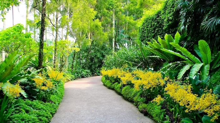 ideen gartengestaltung, pfad im garten, park, gelbe blumen, grüne pflanzen, natur