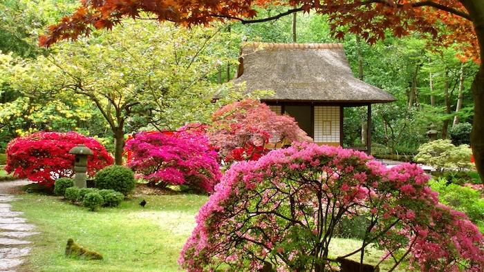 kleingarten gestalten, viele bäume, büsche mit rosa und roten blättern, gartenhaus, garten im asiatischem stil