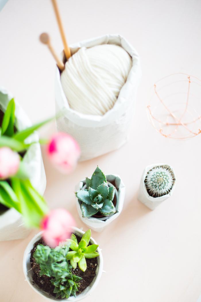 kleine blumentöpfe mit weißen tüten aus einem alten weißen papier, blumentöpfe mit kaktus und violetten blumen mit grünen blättern