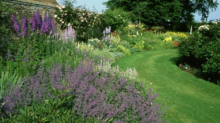 für ein pflegeleichter Garten können Sie viel Lavender pflanzen, ein Gartenweg mit Rasen