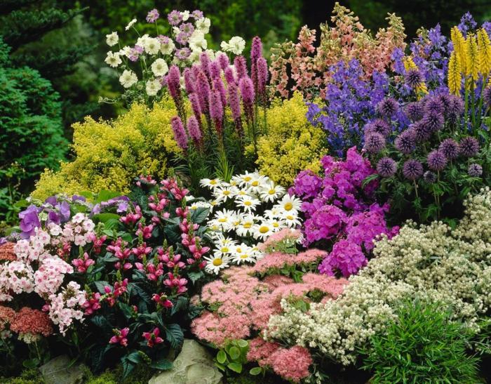ein Beet mit bunten Blumen, die zu einem pflegeleichten Garten gehören, Garten verschönern