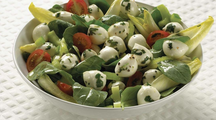 Grün von Salat, rote Tomaten Akzente, weißer Mozarella Käse, Petersilie