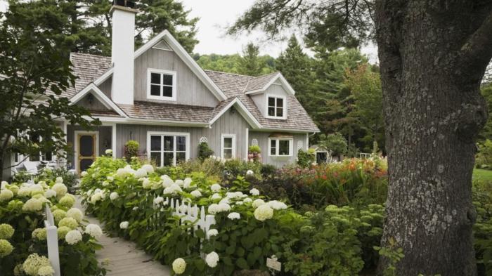 viele schöne weiße Blumen um einem Gartenweg, niedriger weißer Zaun, Garten verschönern