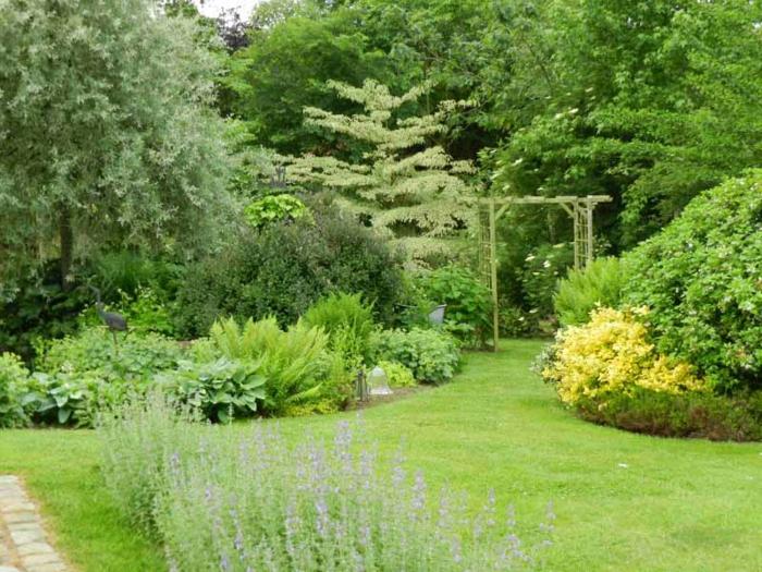 ein Garten mit viel Grün, Ziersträuche, niedrige Bäume, lila und gelbe Blumen, Gartengestaltung Tipps