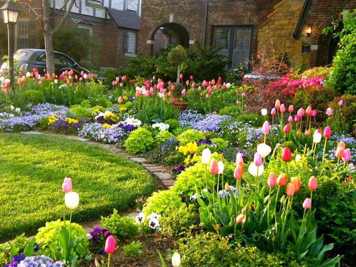 vorgarten deko, häuser, frühlingsblumen im garten, rosa tulpen, auto, blühende blumen