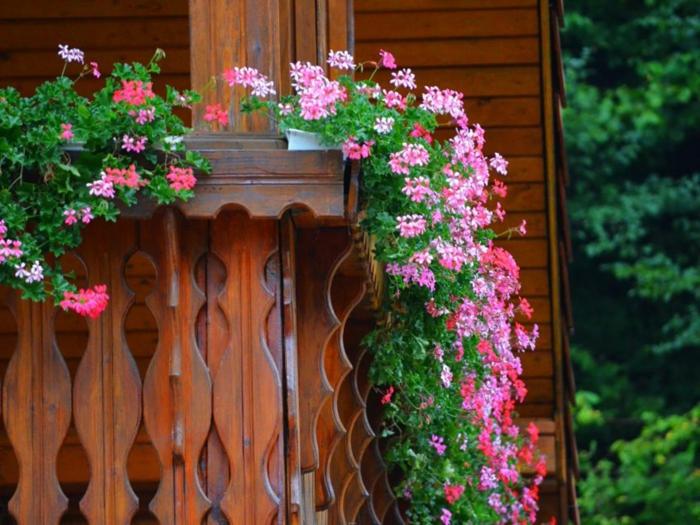 mit blumen den balkon dekorieren, schöne idee für hängende blumen, balkon verschönern, rosarote blumen pflanzen