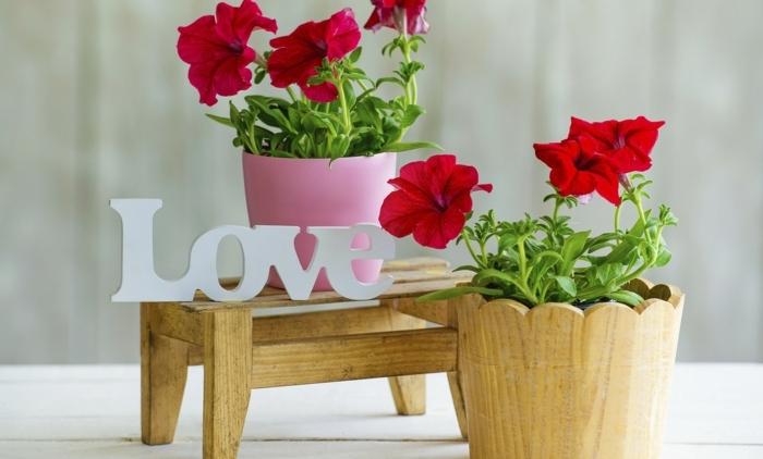 dezente dekorationen, rote blumen in bumentöpfen pflanzen, blumengestecke selber machen, liebe aufschrift tabelle deko