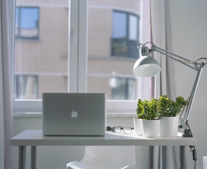 helle Arbeitszimmer, viel Grünes, Wandfarbe Hellgrau, ein grauer Vorhang