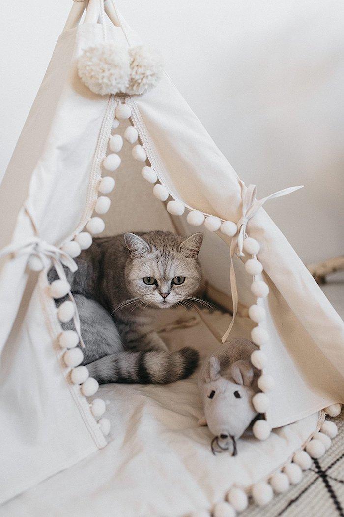 ein kleines weißes zelt tipu aus einem weißen stoff und mit einer kleinen grauen katze mit grünen augen, eine graue maus spielzeug