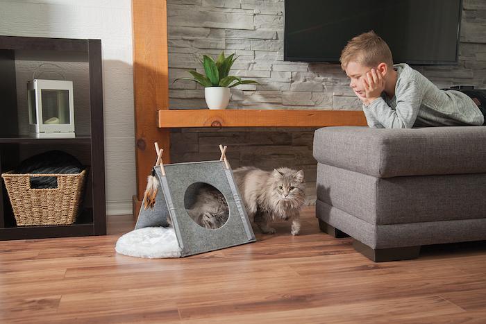 ein wohnzimmer mit einer grauen wand aus ziegeln, eun kind und eine graue katze, ein graues kleines zelt, ein blumentopf mit grünen pflanzen mit grünen blättern