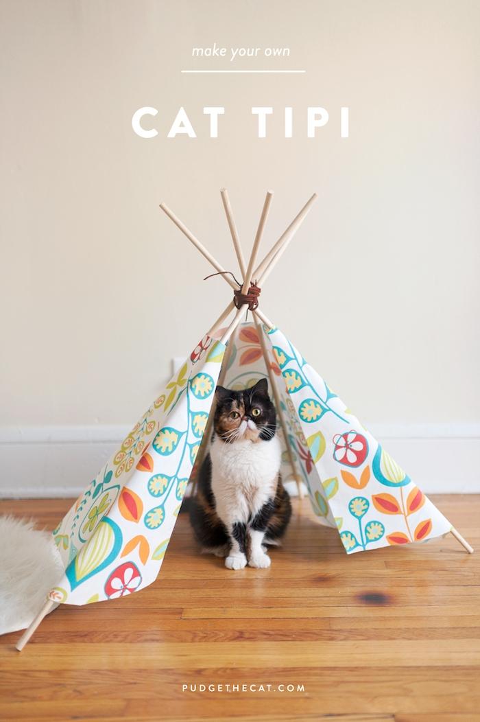 eine katze mit gelben augen, ein boden aus holz und ein kleines mini tipi für katzen, ein zelt aus einem stoff mit vielen blumen und mit langen stöcken aus holz