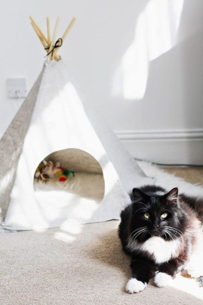 eine schwarze katze mit grünen augen und ein weißer teppich, eine weiße wand und ein kleines weißes katzenzelt, ein mini tipi mit einem weißen stoff und langen stöcken aus holz